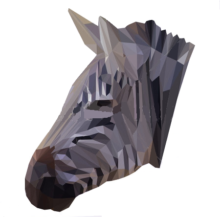 Algoritmo de Google Zebra