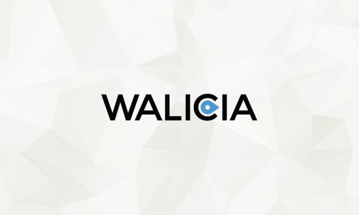 portfolio-walicia